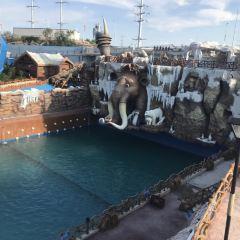 四季貴州極地冒險水世界用戶圖片