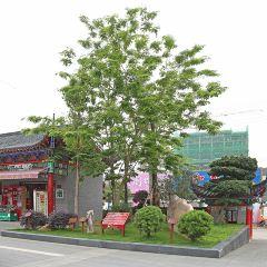 Redwood Bowen Shop User Photo