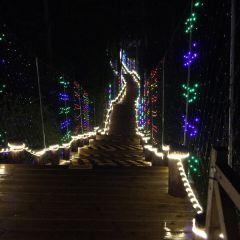 Fukulun Lake Night Market User Photo