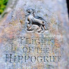 플라이트 오브 더 히포그리프 여행 사진