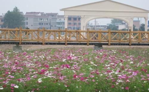 福勞爾花卉樂園