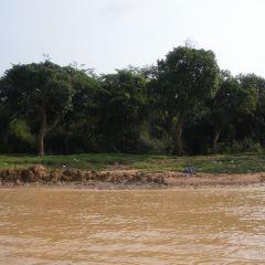 洞里薩河用戶圖片