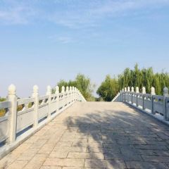 Zibo Gaoqing Luhuyuan Youle Fishing Spot User Photo