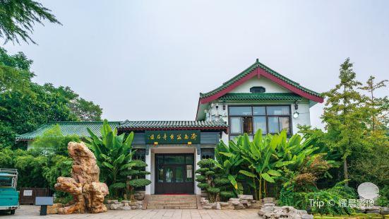 濟南盆景奇石園