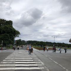 고쿄 가이엔 여행 사진