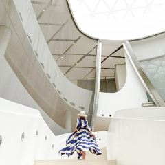 Qatar University User Photo