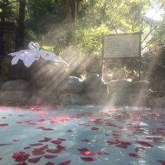 浴穀溫泉用戶圖片