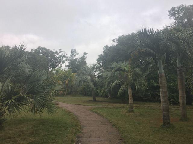 Jinniuling Park
