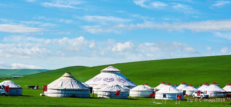 呼倫貝爾大草原