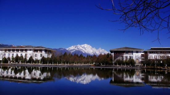 Tourism and Culture College, Yunnan University