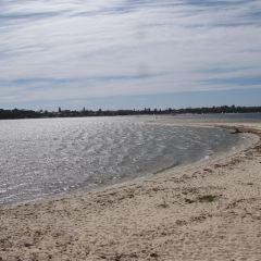 Murphys Point Provincial Park用戶圖片