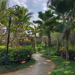 Country Garden Golden Beach Hot Spring Health Club User Photo