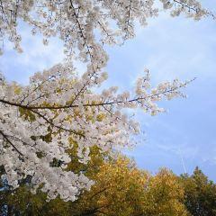 金城湾公園のユーザー投稿写真