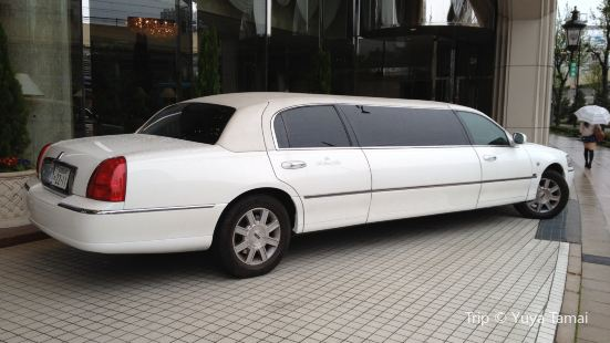 Low Costs Limousine Italy Venice