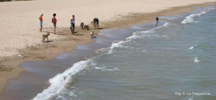 Evanston Beaches | Tickets, Deals, Reviews, Family Holidays