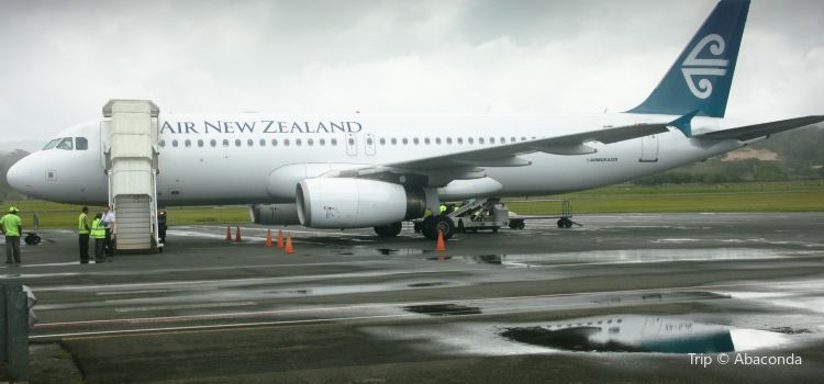 Air New Zealand2