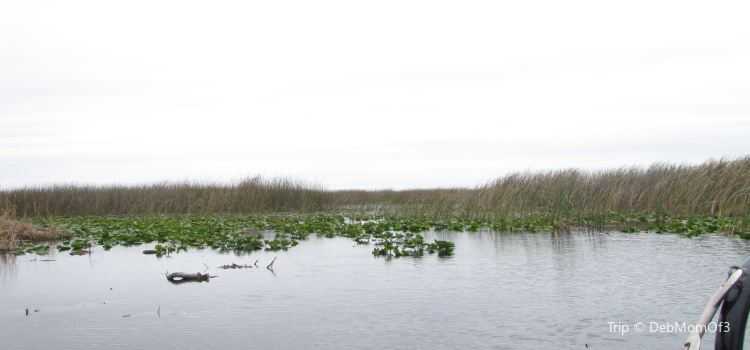 Boggy Creek Airboat Adventures | Tickets, Deals, Reviews