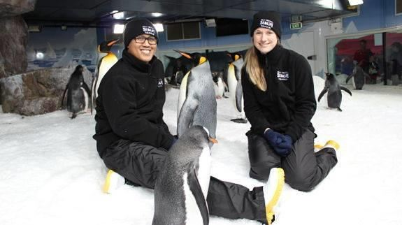 Kelly Tarlton's SEA LIFE Aquarium1