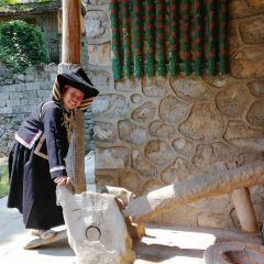 napoheiyizhuangzhai User Photo