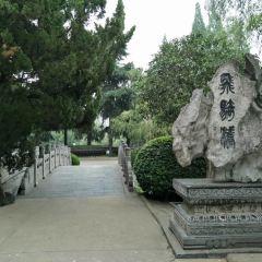 逍遙津公園用戶圖片
