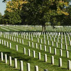 阿靈頓國家公墓用戶圖片