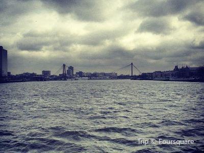 鹿特丹港Spido遊船