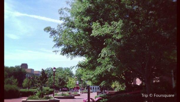 University of Denver2