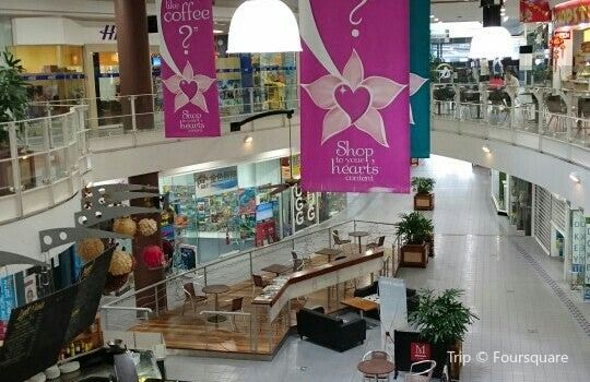 Orchid Plaza3