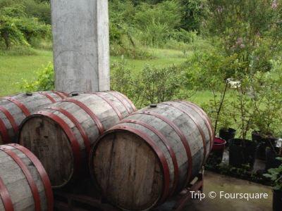 Perdido Vineyards