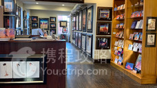Amapola Gallery