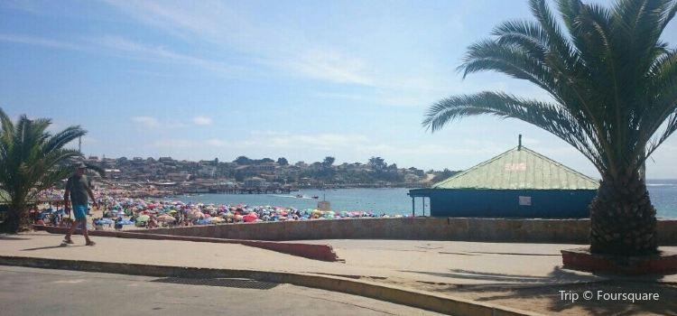 Playa El Quisco
