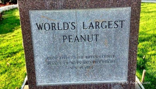 World's Largest Peanut