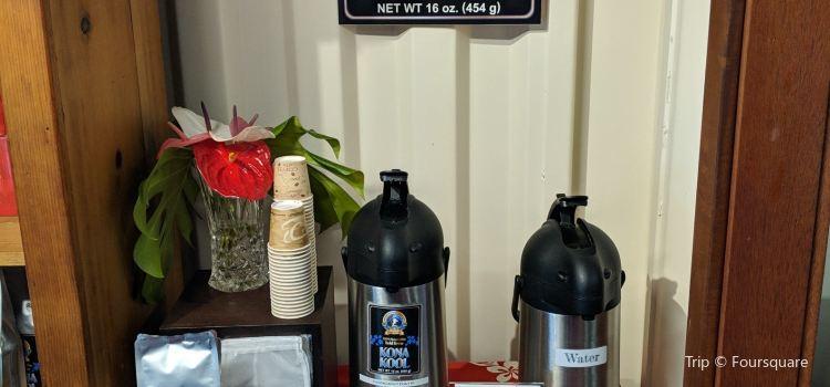Mountain Thunder Coffee Plantation3