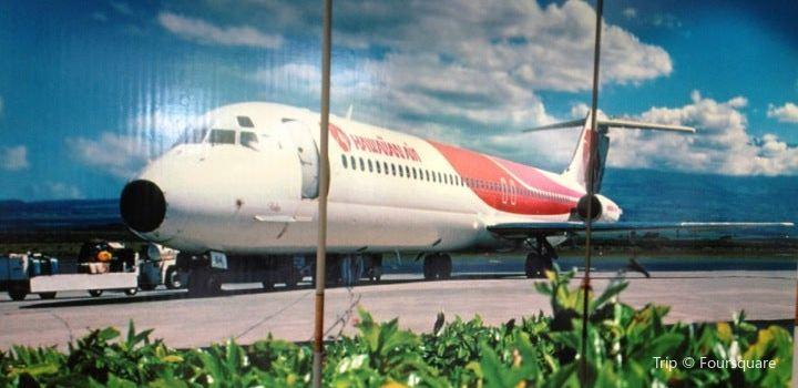 Hawaiian Airlines1