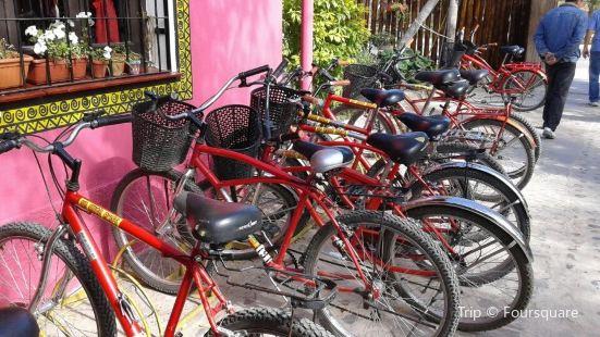 Mr. Hugo Wineries and Bikes