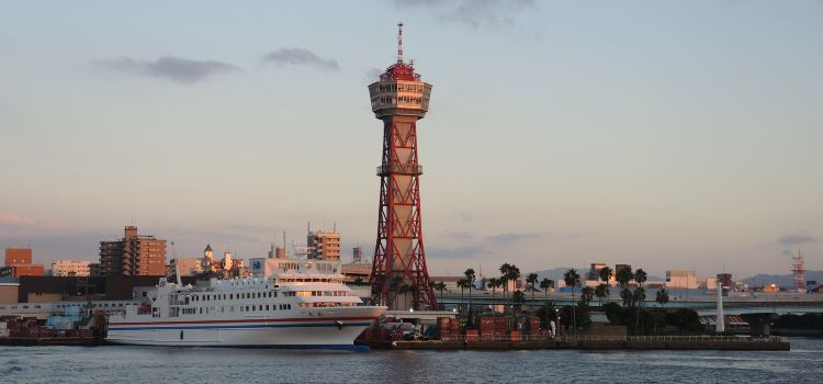 Hakata Port Tower2