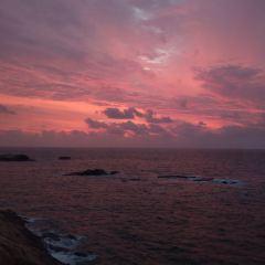青浜島用戶圖片