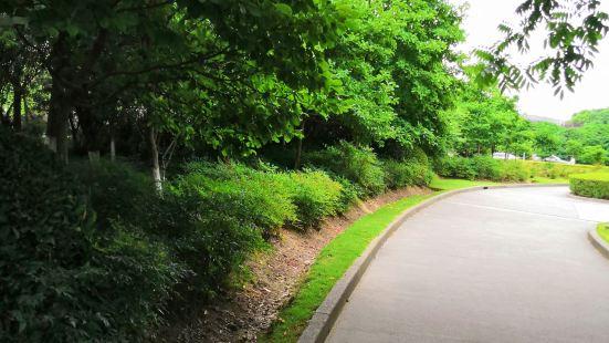 Patricia Ann Byrom Forest Preserve Park