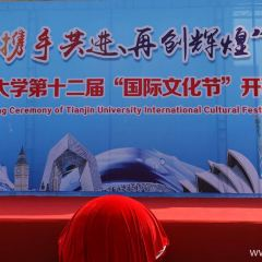 톈진대학 여행 사진