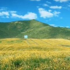 祁連大草原用戶圖片