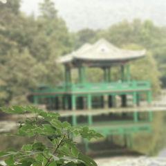 류휘사 여행 사진