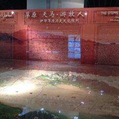 伊犁哈薩克自治州博物館用戶圖片