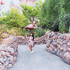 Alice in Wonderland Maze User Photo