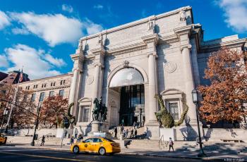 꼭 가봐야하는 유명 박물관