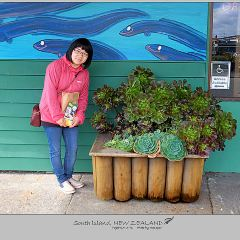 The National Kiwi Centre User Photo