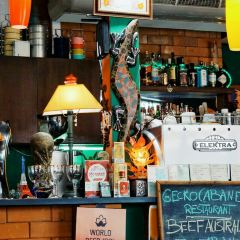 Gecko Cabane User Photo