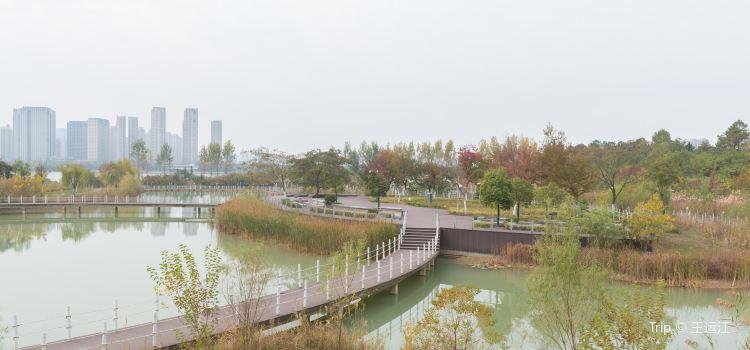 龍子湖風景區2