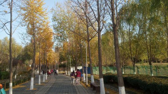 東升文體公園