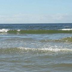 Cayucos State Beach User Photo