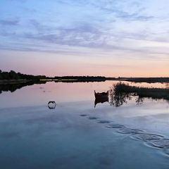 흑성약수호양풍경구 여행 사진